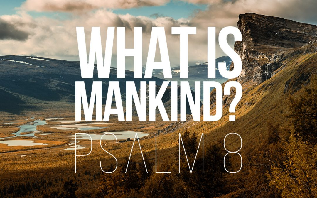 What is Mankind? – Psalm 8